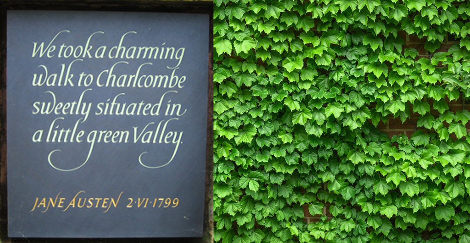 """""""We took a charming walk to Charlcombe sweetly situated in a little green valley"""" Jane Austen 1799"""